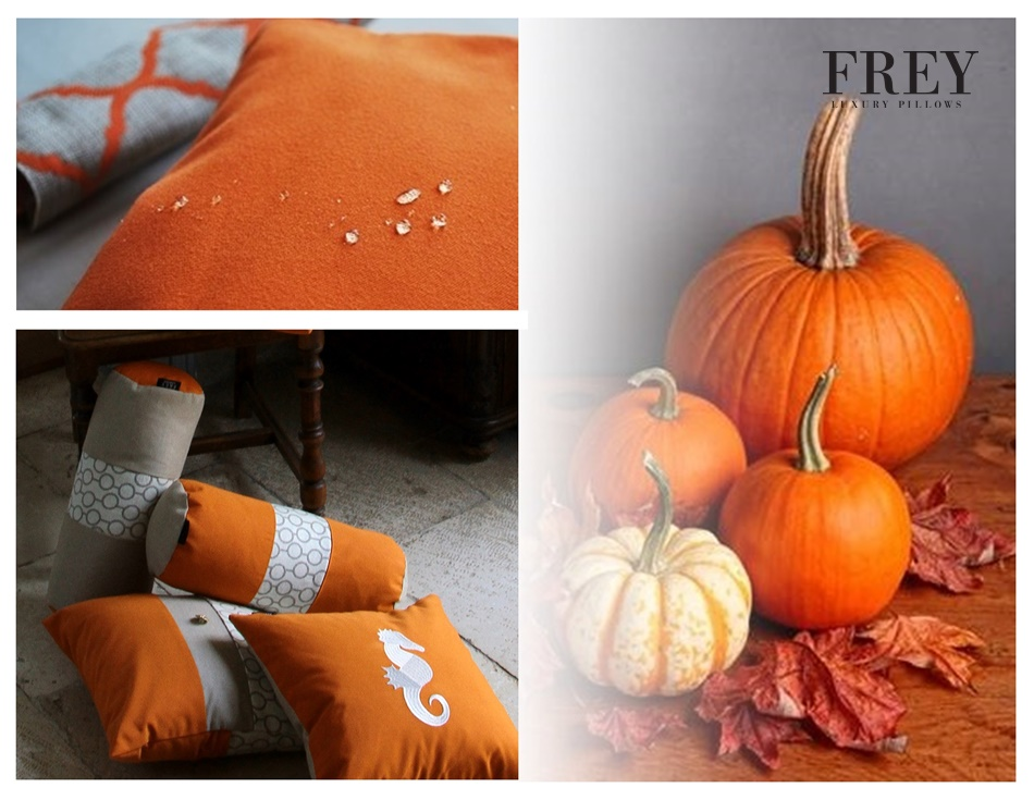 Autumn in Frey pillows